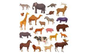 دانلود وکتور حیوانات big animals set