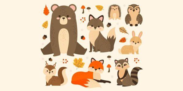 دانلود وکتور حیوانات collection cute forest