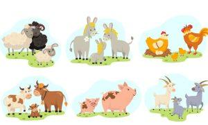 دانلود وکتور حیوانات chicken cow pig donkey55