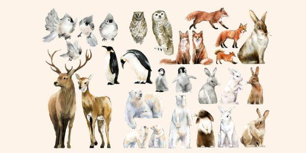 دانلود وکتور حیوانات hand drawn wildlife