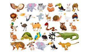 دانلود وکتور حیوانات set-of animal character