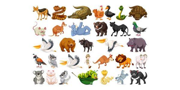 دانلود وکتور حیوانات set wild animals